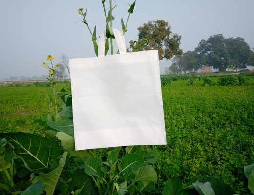 stock-photo-box-type-non-woven-reusable-white-bag-hang-with-green-plant-eco-friendly-bags-on-green-background-1606525486